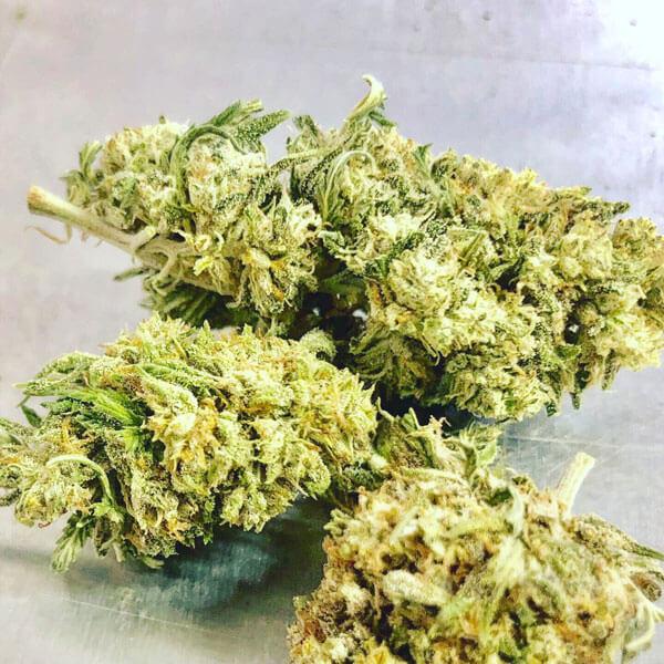 Jack Frost CBG - Jack Frost CBD Hemp Flower