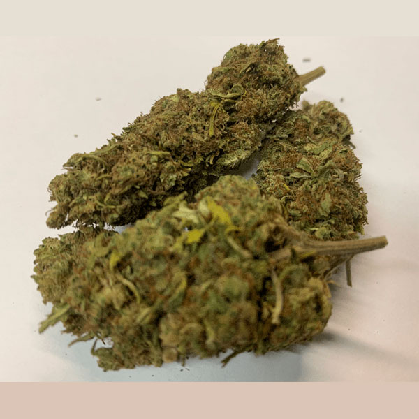 sour-tsunami-green-house-CBD-Flower